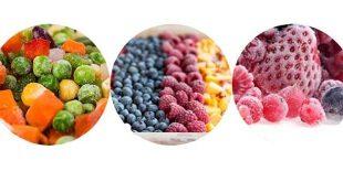 Foodelphi.com donmuş freezing dondurulmuş gıda