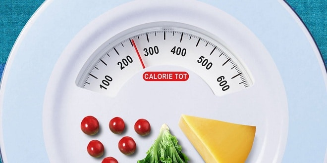 Foodelphi.com kalori calorie