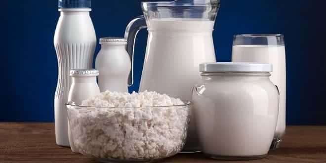 www.foodelphi.com