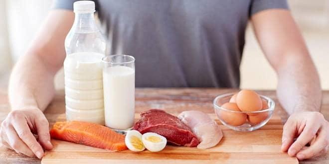 protein sağlık