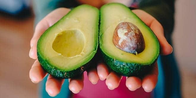 Foodelphi.com avakado meyve