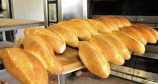 Foodelphi.com fırın fırıncılık ekmek