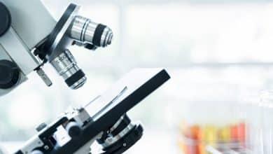 Foodelphi-Microscope